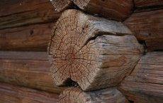 стіни такого дерев'яного будинку потрібно обробити антисептиком і пофарбувати